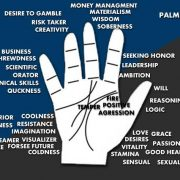 palmistry sign of becoming doctor