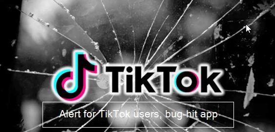 Alert for TikTok users, bug-hit app