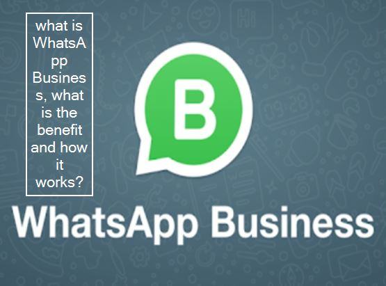 -Know What Is WhatsApp Business App And How It Works _ Learn what is WhatsApp Bus