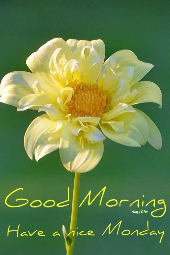 Good morning Monday : Monday morning messages, Quotes ...