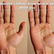Palmistry Lifeline, know what it says about you