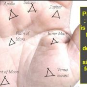 Palmistry - person is not able to take fast decision if these signs are found in hand