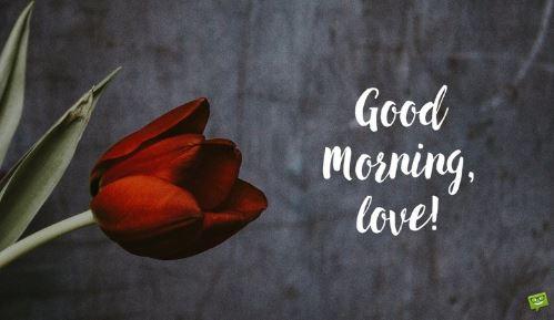 good morning my love - Good morning Love