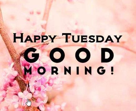 good morning tuesday wishes Happy tuesday