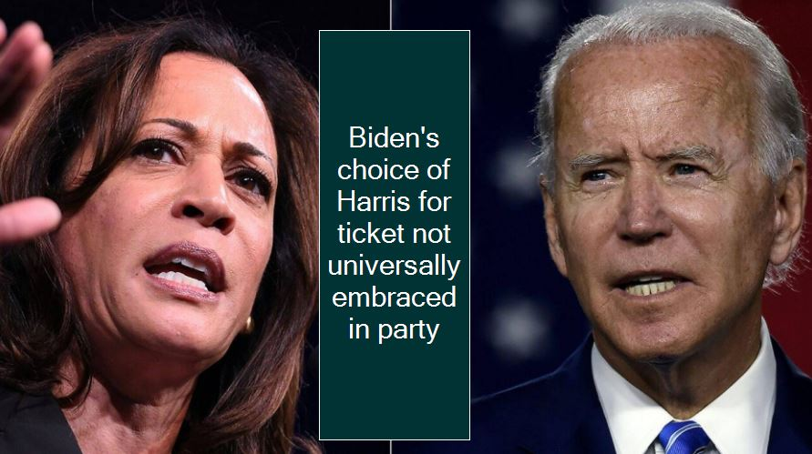 Biden's choice of Harris for ticket not universally embraced in party