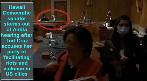 Hawaii Democratic senator storms out of Antifa hearing after Ted Cruz accuses her party of 'facilitating' riots and violence in US cities