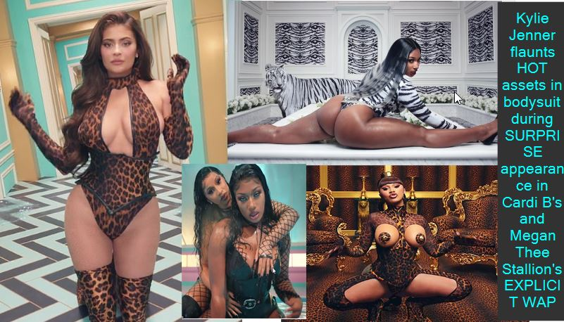 Kylie Jenner flaunts HOT assets in bodysuit during SURPRISE appearance in Cardi B's and Megan Thee Stallion's EXPLICIT WAP