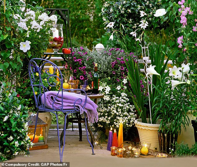 British gardening expert Monty Don, shared advice for nurturing white plants in an extract from one of his books. Pictured:White flowers including nicotiana in the early evening