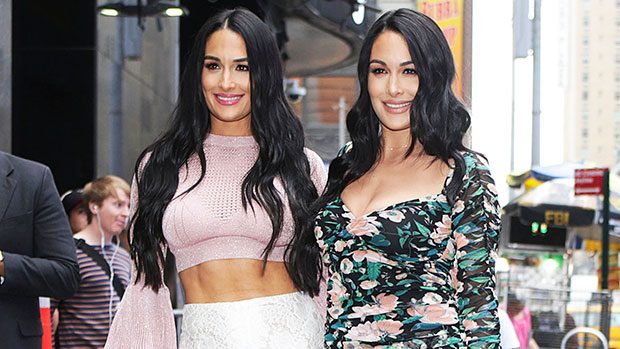 Nikki & Brie Bella Proudly Show Off Their Post-Baby Bodies In Intimate New Selfies — See Pics