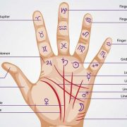 Palmistry - Sun line and Fate line combination for brightest luck