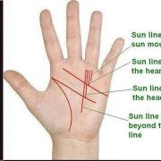 Palmistry These lines of hands are a sign of a good and happy future sun line