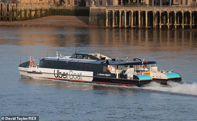 Marine support units intercepted the Thames Clippers vessel after Metropolitan Police received reports that a man had jumped a security gate and stolen the river bus from Trinity Buoy Wharf in Poplar, east London