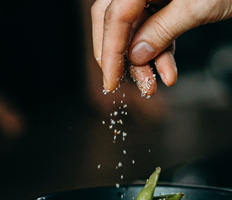 10 alternative ingredients to salt to elevate the flavor of your meals | The NY Journal