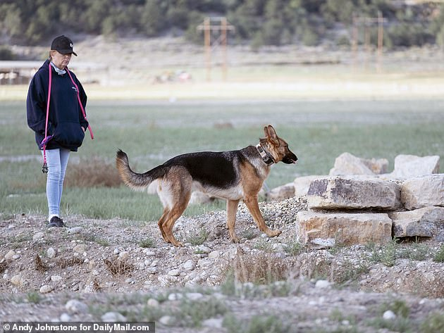 A second search of the site took place on Monday using different cadaver dogs and the dogs' handler told DailyMail.com they got another hit. The handler explained the dogs only are trained to pick up human scents