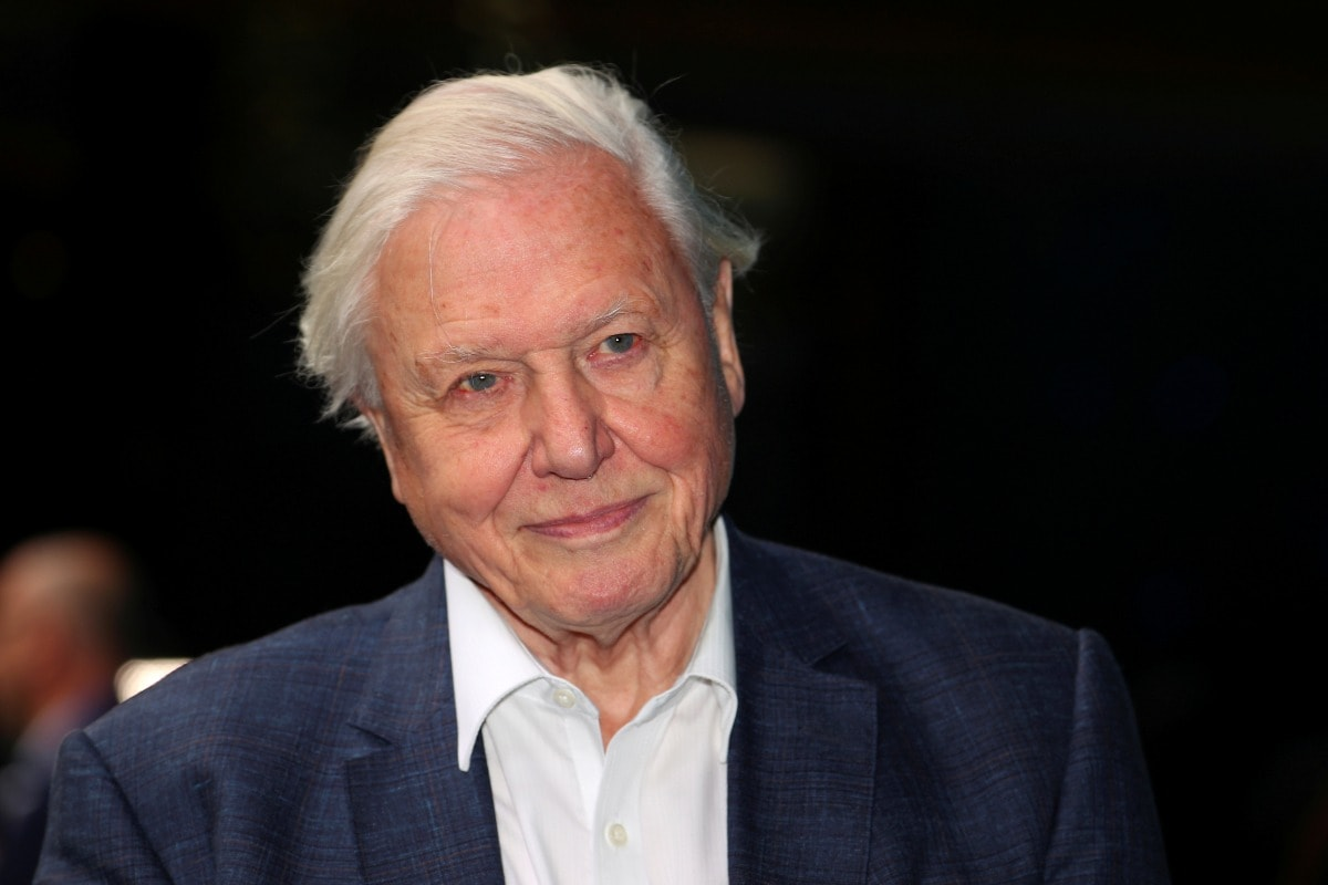 David Attenborough Sets Record for Fastest to 1 Million Followers on Instagram