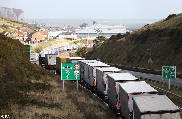 RICHARD LITTLEJOHN: Government insists no hard border in Ireland but there will be one in Kent