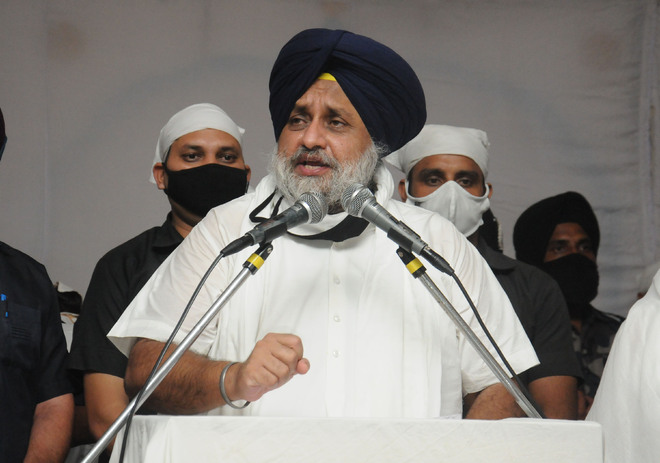 Sukhbir Badal: Willing to follow anyone for welfare of farmers