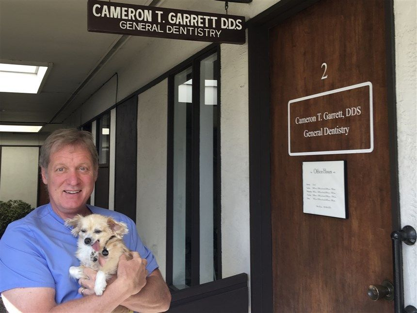 Toothless dog gives support to patients in dental consultation | The NY Journal