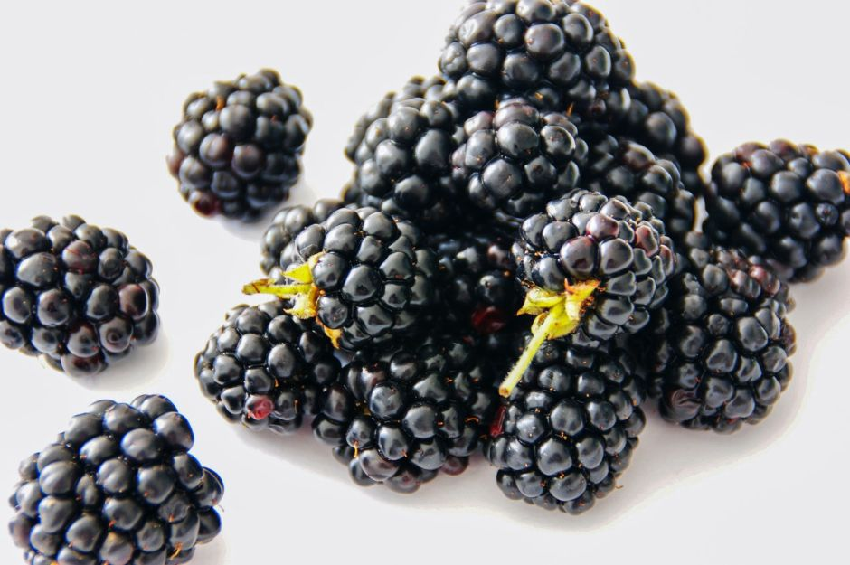 Why are blackberries the best snack for the brain? The NY Journal