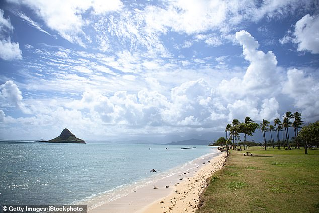 According to the citation, Adams had been taking in the scenic views at Kualoa Regional Park (pictured) which had been closed under COVID-19 restrictions