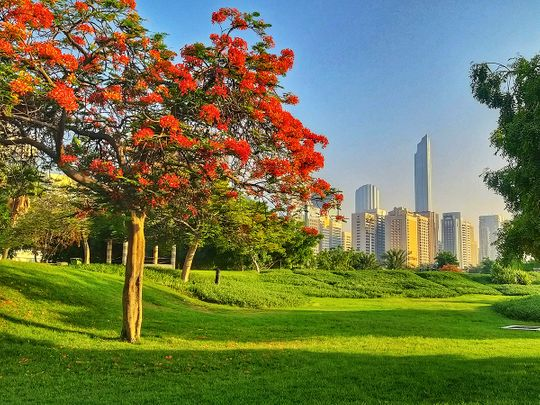 UAE weather: It's mostly sunny and partly cloudy across the emirates