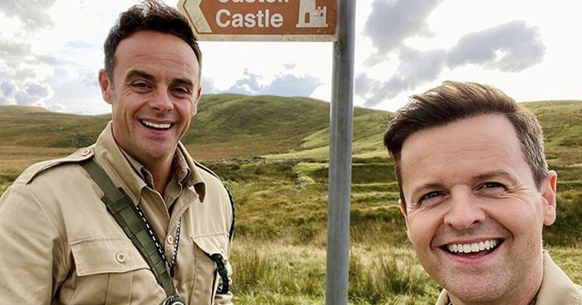 Ant & Dec face ban from making sheep sex jokes as I'm A Celebrity moves to Wales