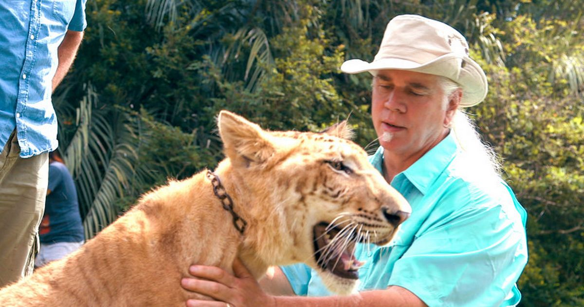 Tiger King star Doc Antle charged with animal cruelty and wildlife trafficking