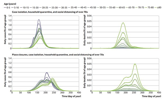 How cases and deaths would look if the UK only isolated entire households of Covid-19-positive people and made over-70s lockdown. Graphs on the left show how younger people would have picked up the virus much more easily and built up some herd immunity. It would also cause less deaths, shown right, according to the researchers