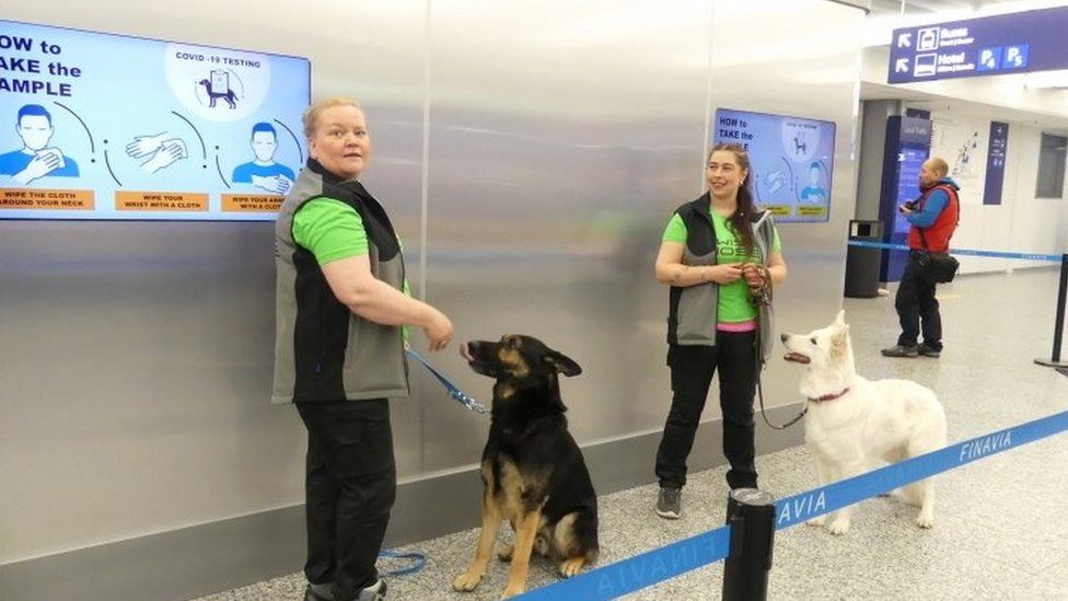 Instructors with sniffer dogs Valo (left) and E.T. at Helsinki airport. Photo: September 2020