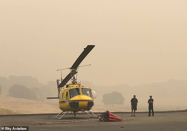 Firefighters took pictures of the bird after it boarded the UH-1 Huey Helicopter (pictured) piloted by Sky Aviation's Dan Alpiner