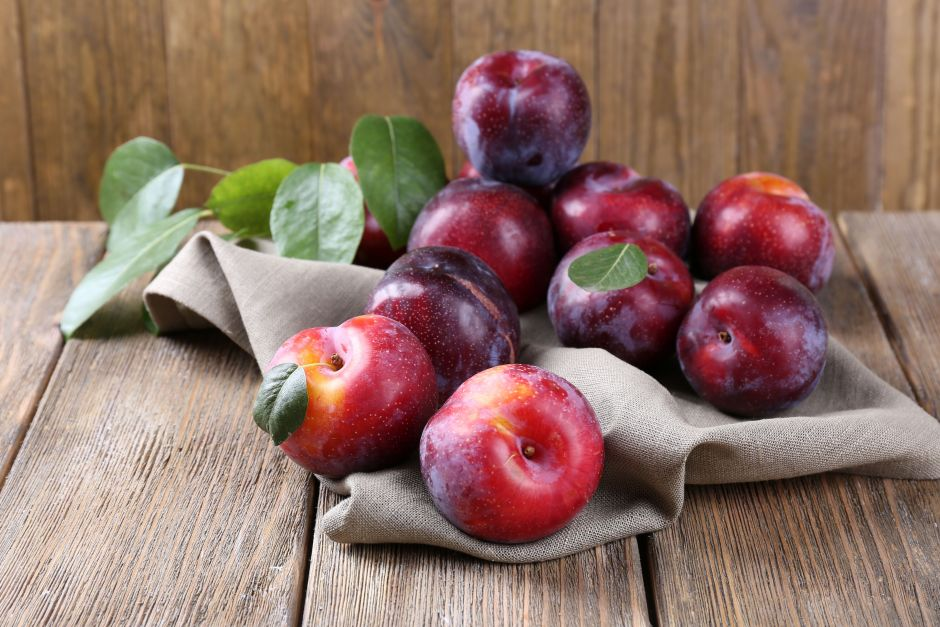 What types of plums exist and why we should add them to our diet | The NY Journal
