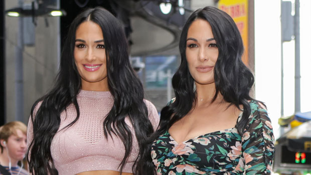 Nikki Bella Shares Hilarious 'Mom Twerks' Video Of Sister Brie Bella 11 Weeks After Giving Birth
