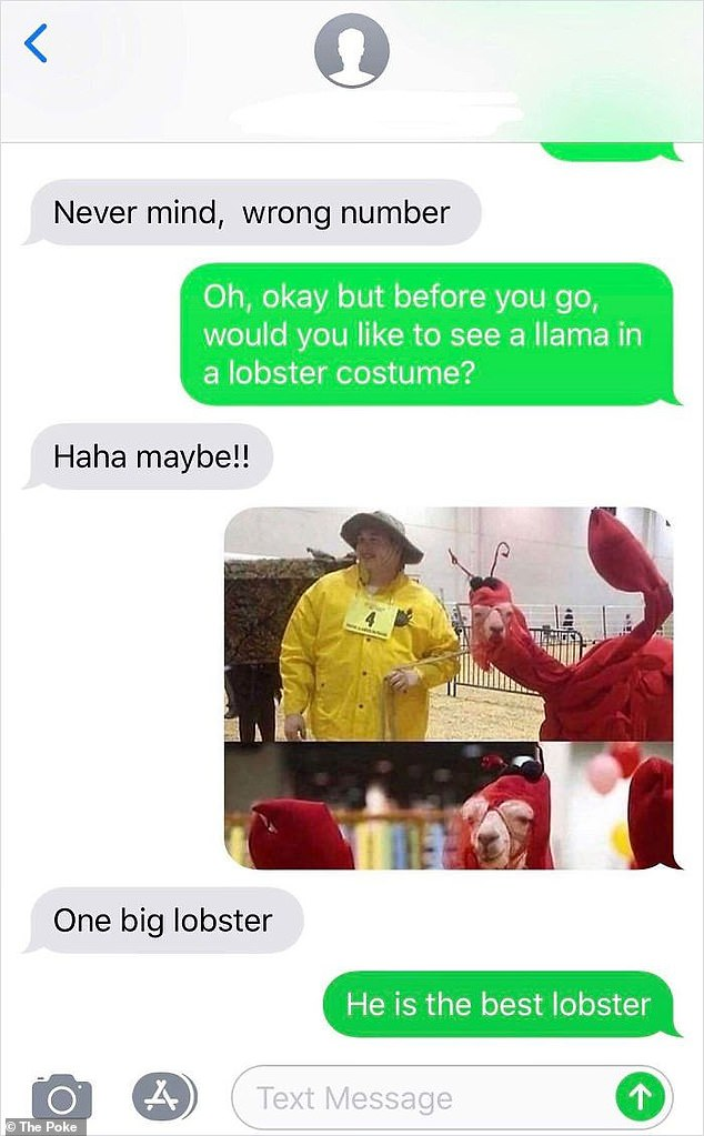 One person was gifted a bizarre photo of a woman walking her pet llama dressed as a lobster, after revealing they had been mistakenly texted