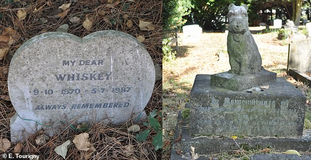 Examples of variation in gravestone design from the People¿s Dispensary for Sick Animals pet cemetery in Ilford, east London