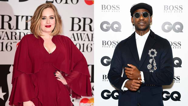 Adele Reveals She's A 'Single Cat Lady' After Skepta Dating Rumors Resurface — See Message