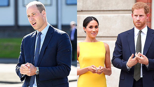 Prince William Was Upset & Refused To Visit Harry & Meghan Markle For 8 Days After Archie's Birth