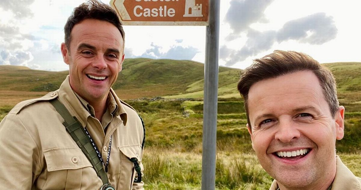 I'm A Celebrity hosts Ant and Dec earning a whopping '£12,000 a day' for show