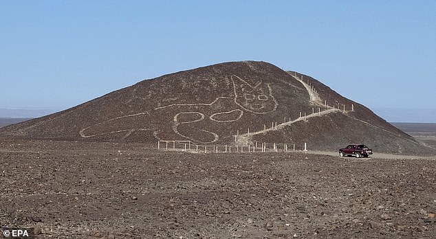 2,200-year-old depiction of a cat is uncovered etched into a Peruvian hillside