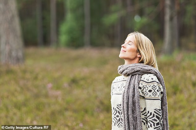 And breathe… LOUISE ATKINSON tests out the latest ways to purify the air around you