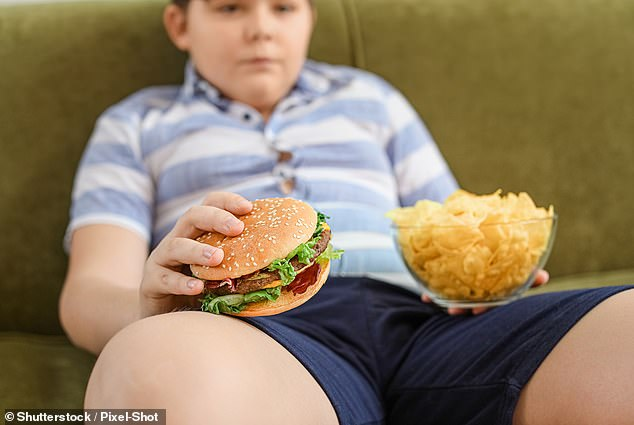 Childhood obesity may be caused by changes in the reward centre of the brain