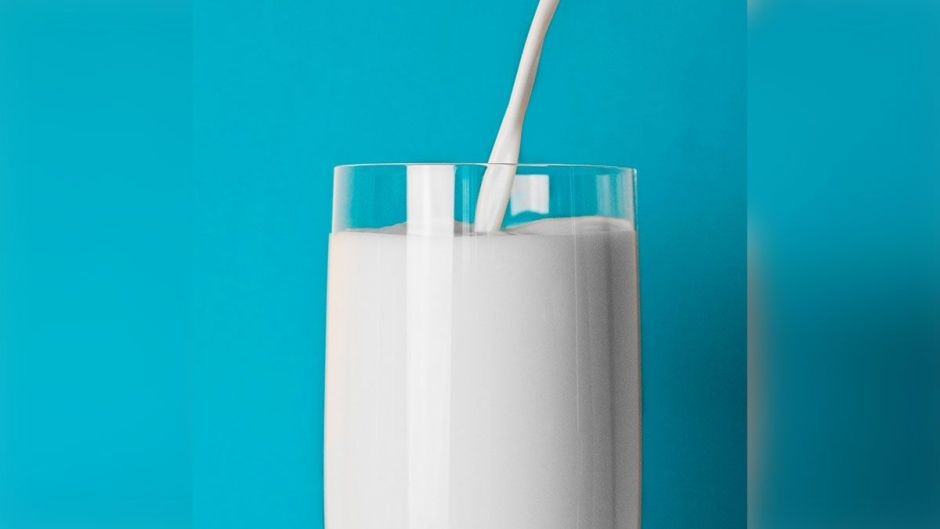 Company is creating plant-based milk that tastes like cow's | The NY Journal