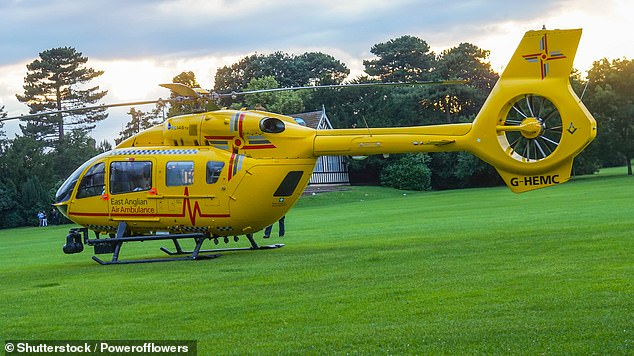 Essex hit-and-run: Two arrests, police officer airlifted to hospital