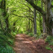 Exploring the Fosse Way – a quintessentially English road at the heart of Roman Britain