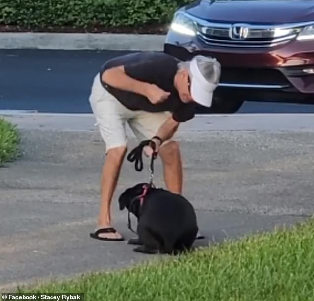 Florida man is caught on camera punching his terrified dog because it ran out of his house