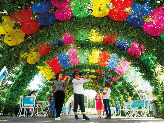 Flower power: Dubai Miracle Garden welcomes back visitors with 150m flowers on November 1