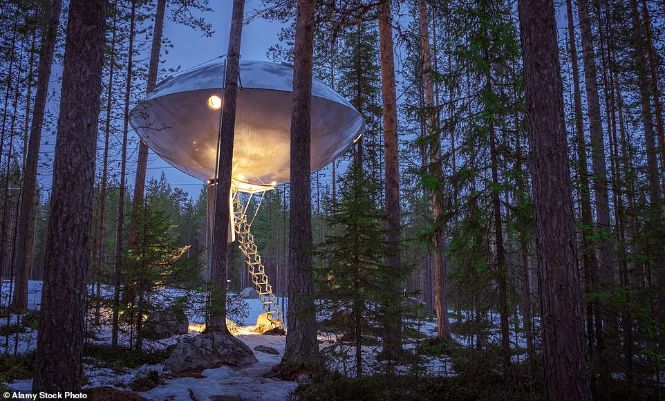 From UFO treehouses to ice hotels – and bone chilling Arctic baths,Sweden's cool all year round!