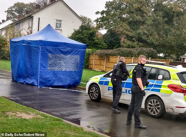 Hampshire Police arrest boys, 14, for attempted murder of man, 56