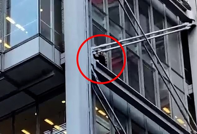 Massachusetts man, 36, climbs to the sixth floor of the New York Times building