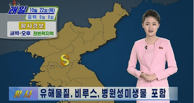 North Korea tells people to stay indoors over 'yellow dust' virus fears