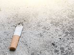 Quitting: Number of Britons who gave up smoking more than DOUBLED after lockdown